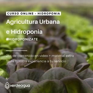 Curso Online de Hidroponia...