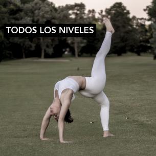 Yoga Bonito